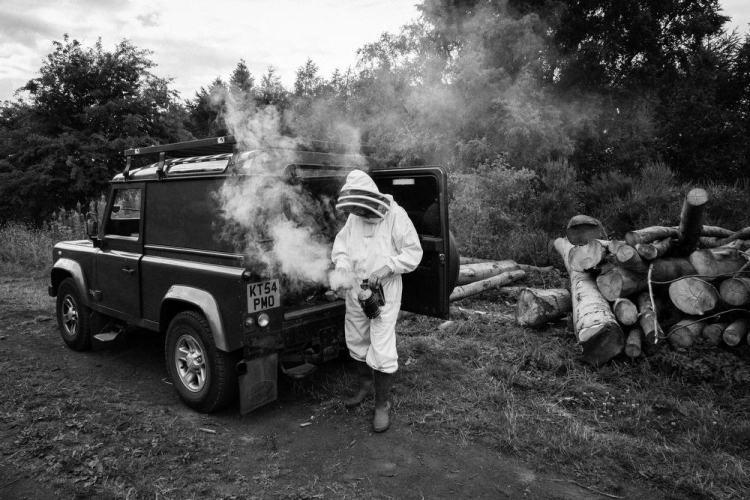 Beekeeping_0003