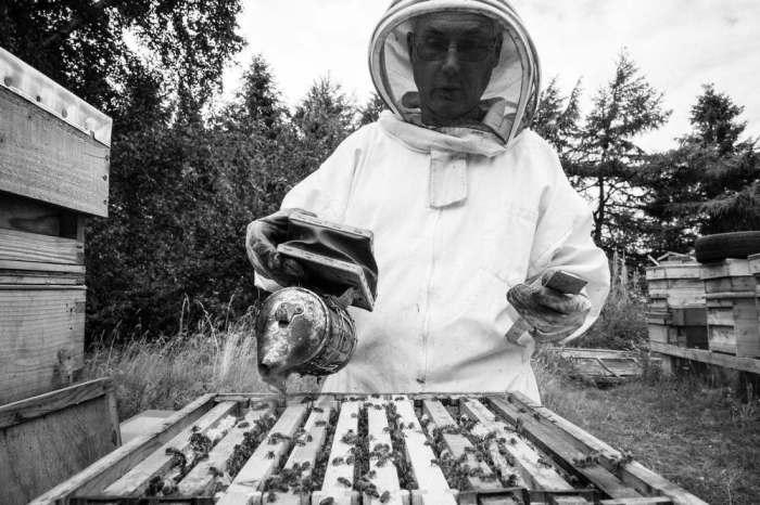 Beekeeping_0007
