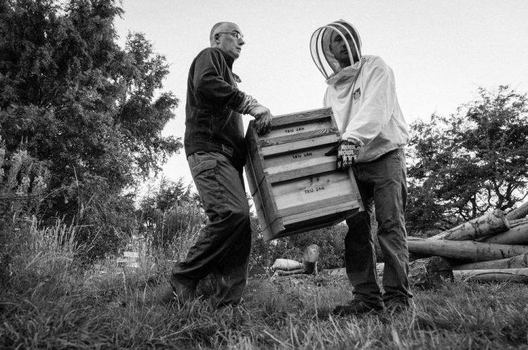 Beekeeping_0021