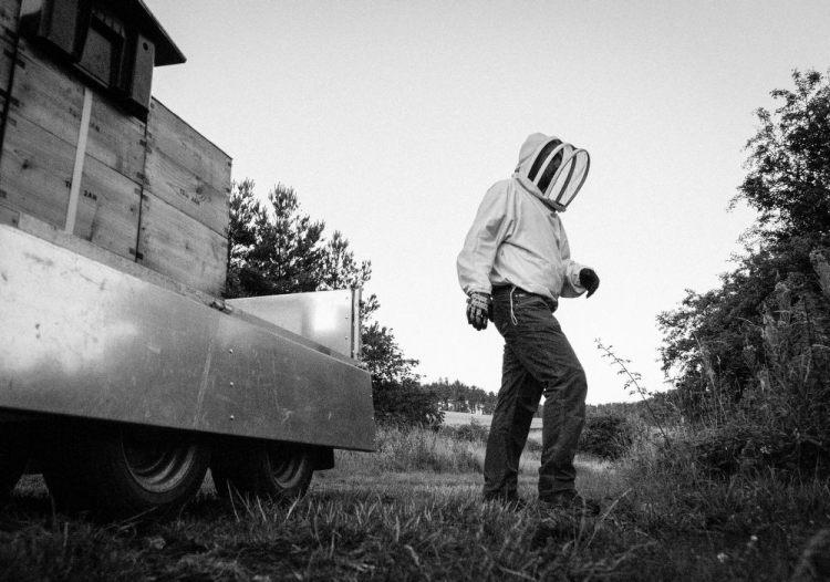 Beekeeping_0023