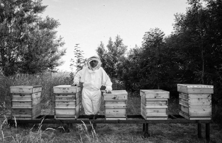 Beekeeping_0030